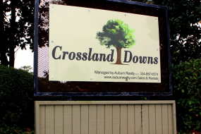 Crossland Downs